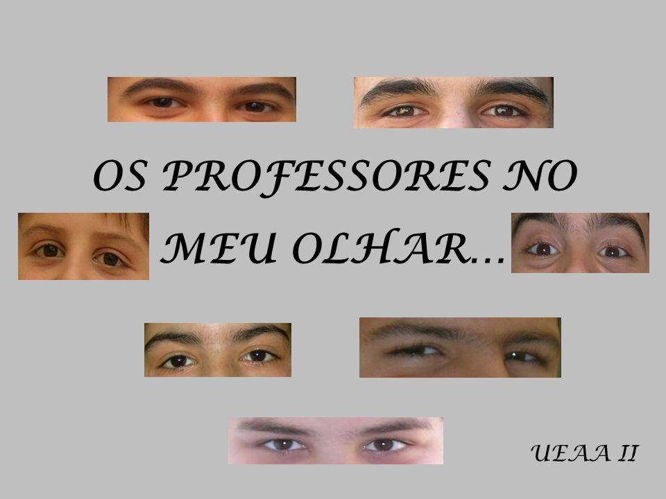 OS PROFESSORES NO MEU OLHAR…
