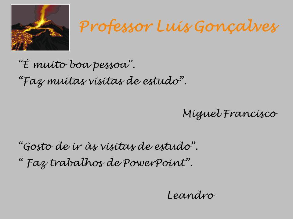 Professor Luis Gonçalves
