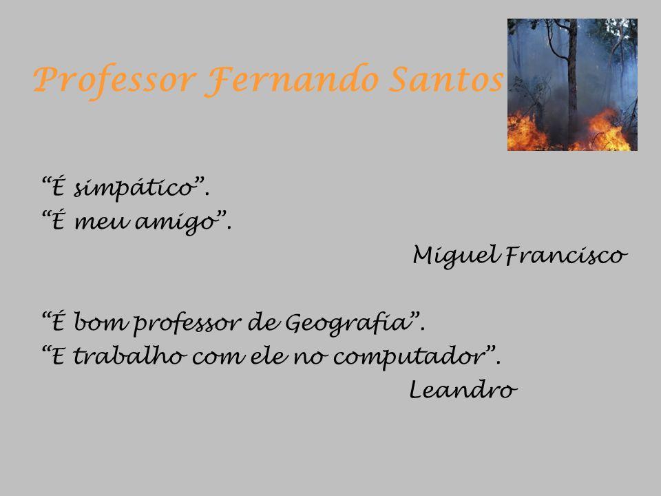 Professor Fernando Santos