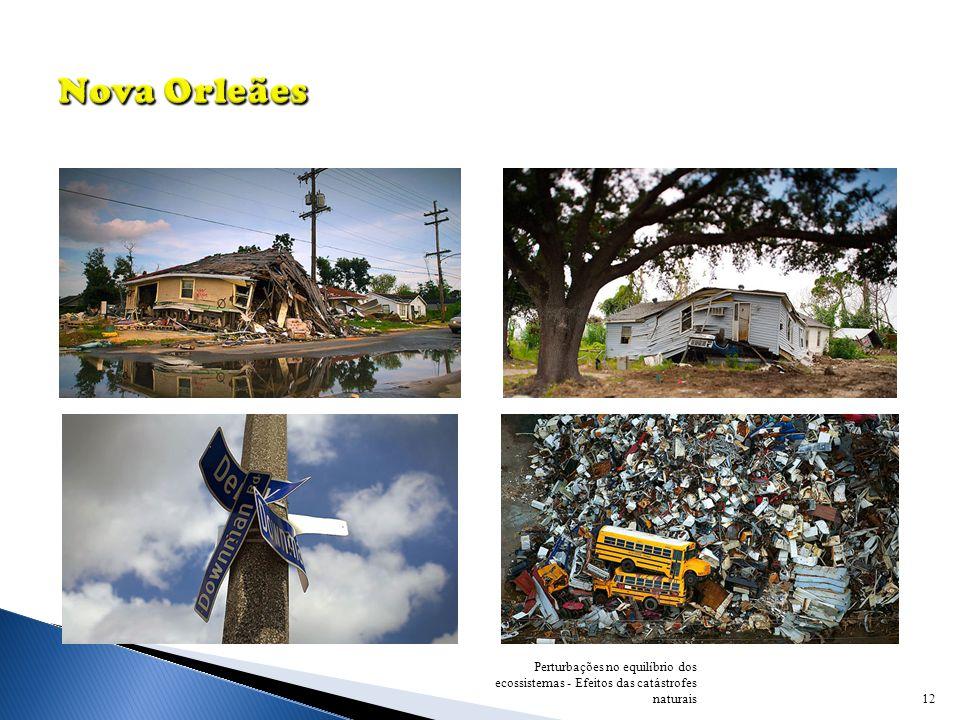 Nova Orleães Perturbações no equilíbrio dos ecossistemas - Efeitos das catástrofes naturais