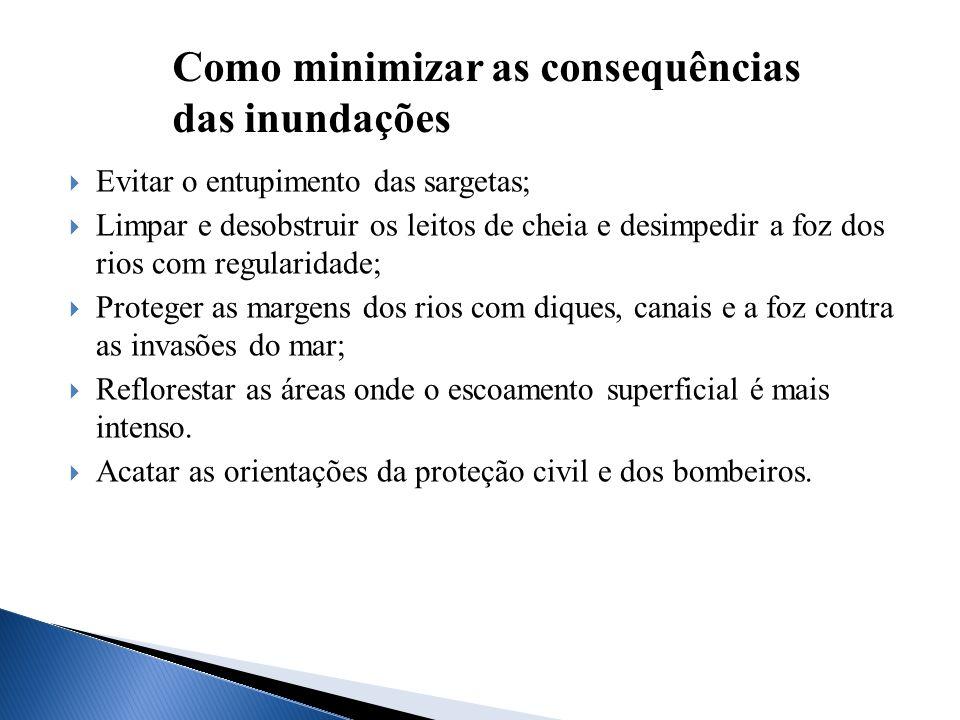Como minimizar as consequências das inundações