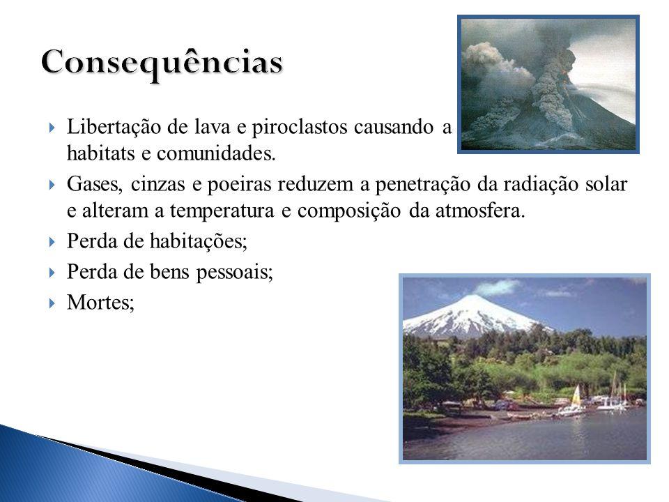 Consequências Libertação de lava e piroclastos causando a destruição de habitats e comunidades.