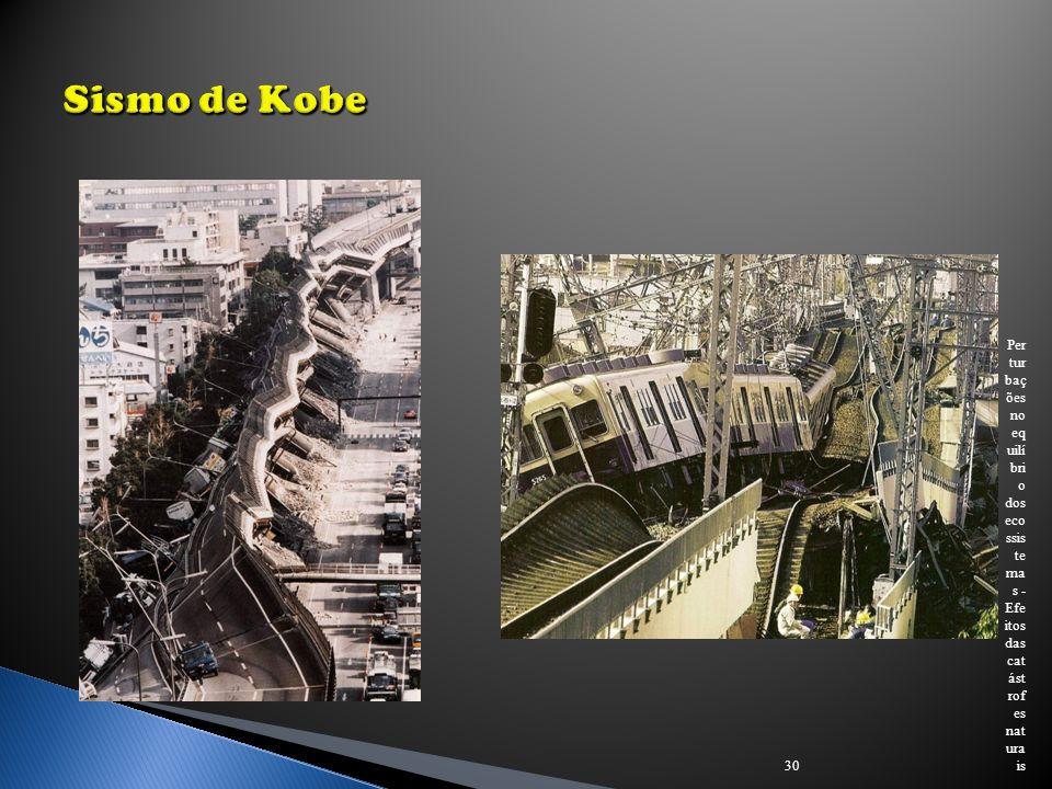 Sismo de Kobe Perturbações no equilíbrio dos ecossistemas - Efeitos das catástrofes naturais