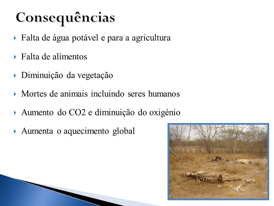 Consequências Falta de água potável e para a agricultura