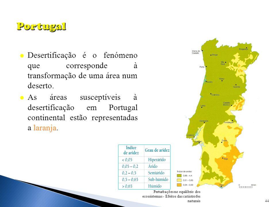 Portugal Desertificação é o fenómeno que corresponde à transformação de uma área num deserto.