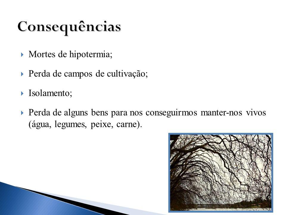 Consequências Mortes de hipotermia; Perda de campos de cultivação;
