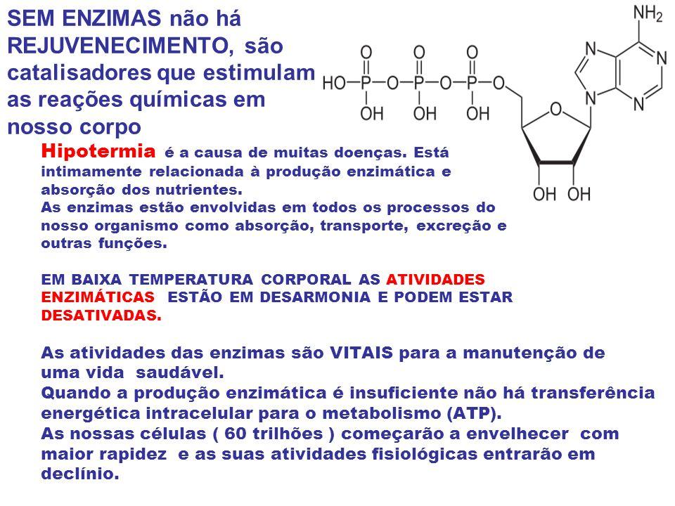 SEM ENZIMAS não há REJUVENECIMENTO, são catalisadores que estimulam as reações químicas em nosso corpo