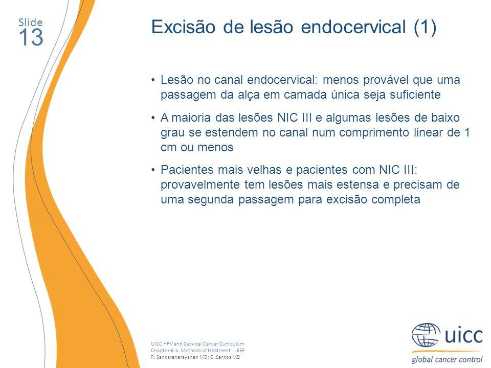 13 Excisão de lesão endocervical (1) Slide