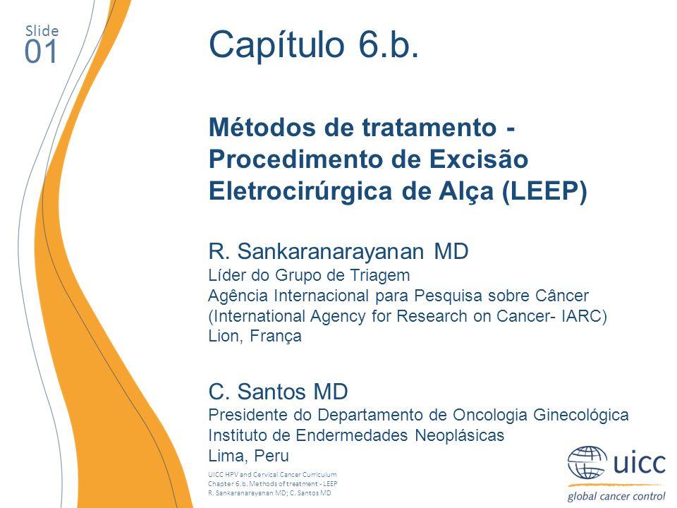 Slide Capítulo 6.b. Métodos de tratamento - Procedimento de Excisão Eletrocirúrgica de Alça (LEEP)