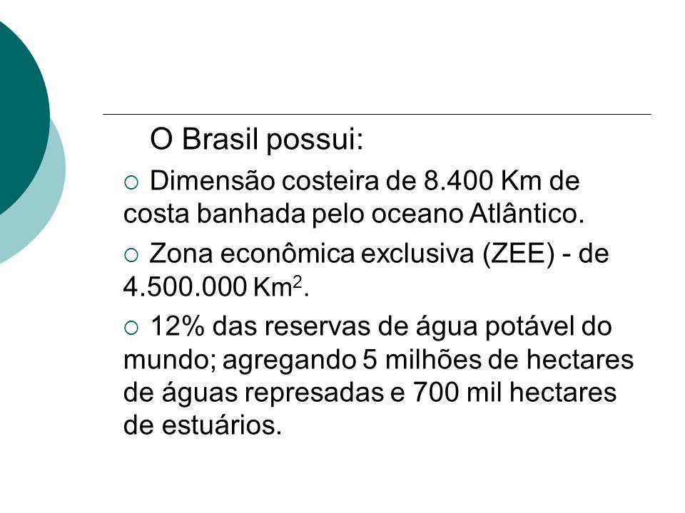 O Brasil possui: Dimensão costeira de 8.400 Km de costa banhada pelo oceano Atlântico. Zona econômica exclusiva (ZEE) - de 4.500.000 Km2.
