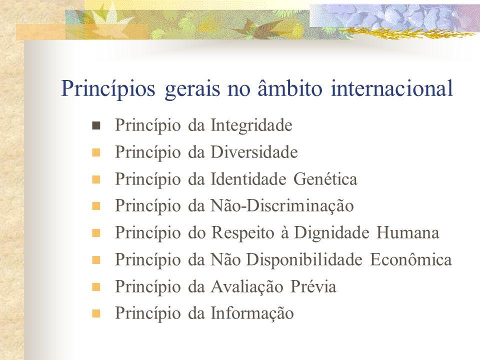 Princípios gerais no âmbito internacional