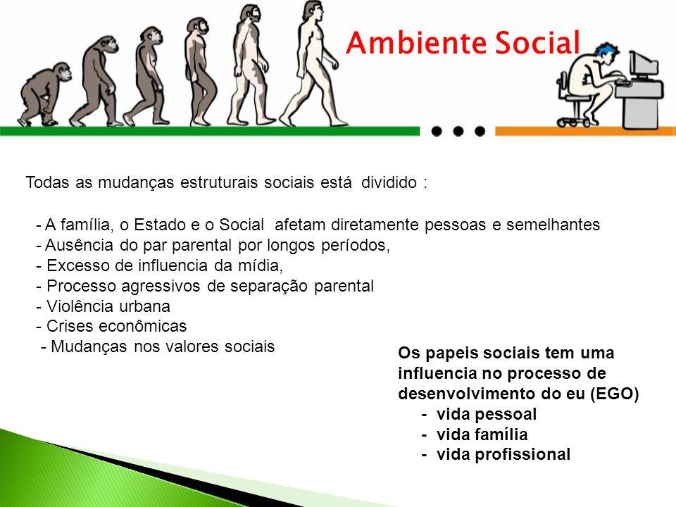 Ambiente Social Todas as mudanças estruturais sociais está dividido :