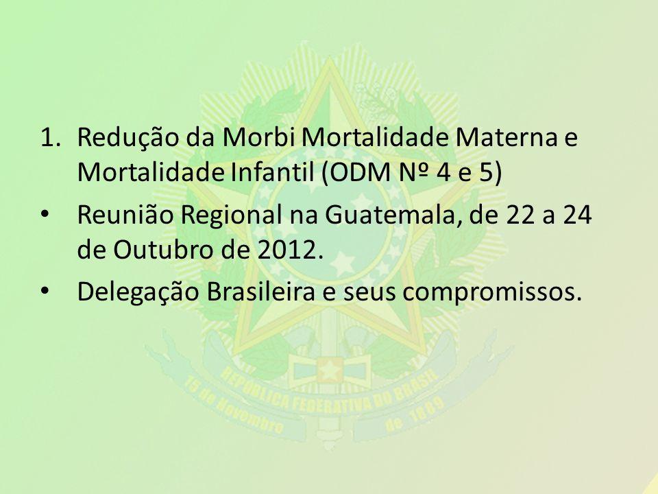Redução da Morbi Mortalidade Materna e Mortalidade Infantil (ODM Nº 4 e 5)