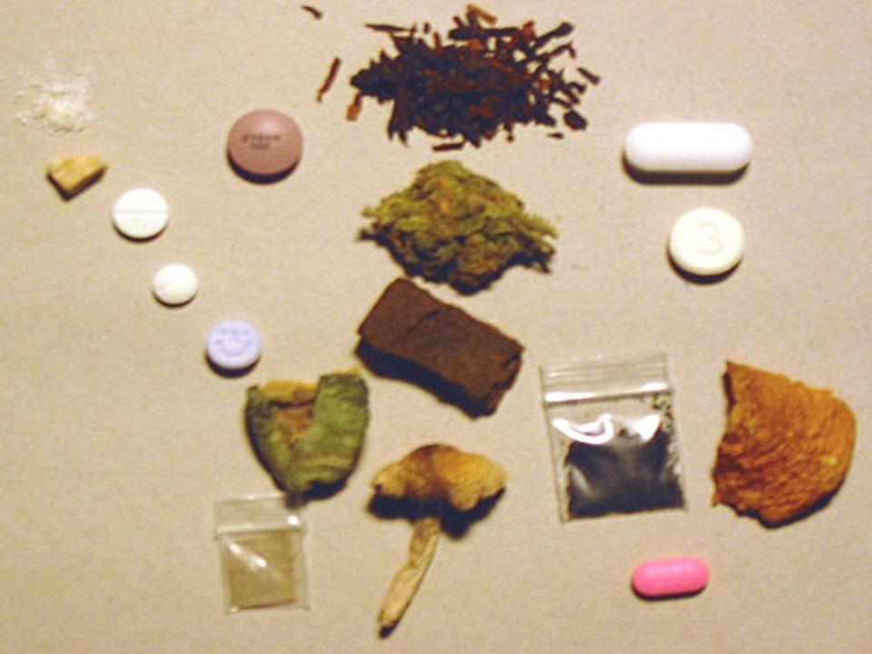 Submetidos ao risco a vontade de testar em um mundo onde o narcotráfico permeia a luz do dia...