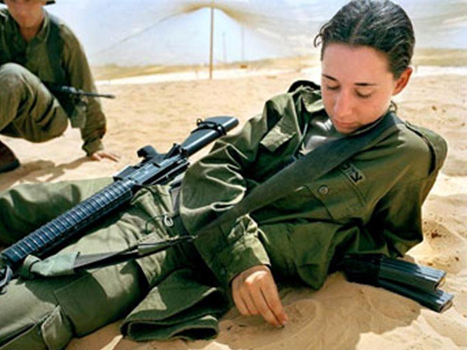 Vivem em um mundo conturbado e violento onde ocorrem cerca de nove guerras e 130 conflitos no mundo em 2008, segundo o Instituto Heidelberg para o Estudo de Conflitos Violentos.