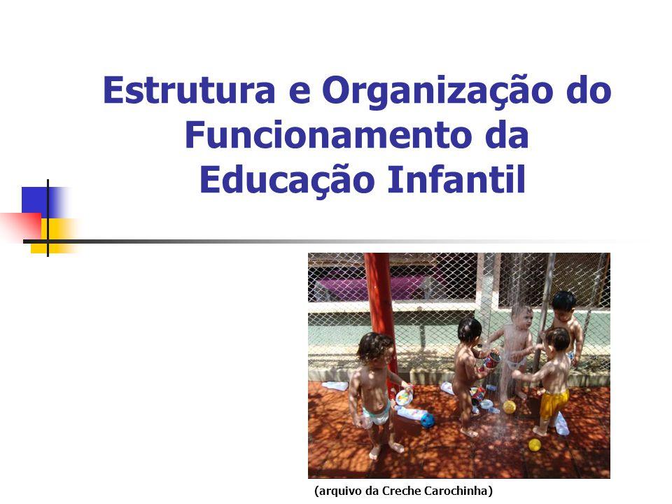 Estrutura e Organização do Funcionamento da Educação Infantil