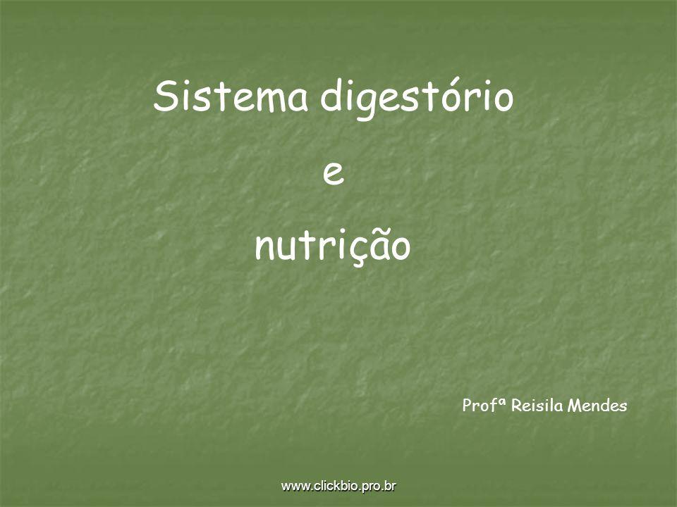 Sistema digestório e nutrição Profª Reisila Mendes www.clickbio.pro.br