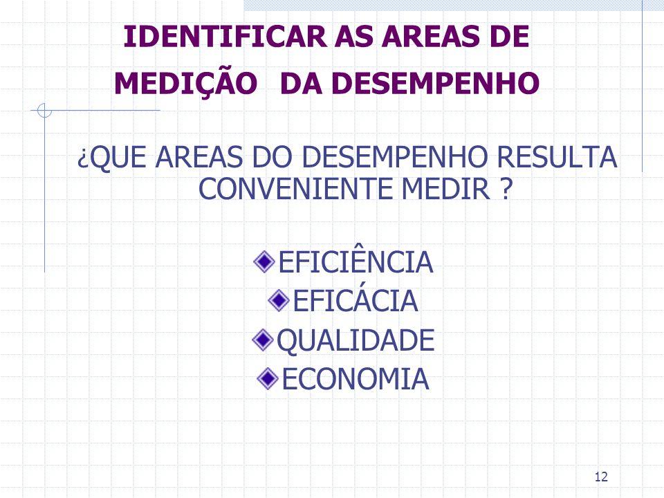 IDENTIFICAR AS AREAS DE MEDIÇÃO DA DESEMPENHO