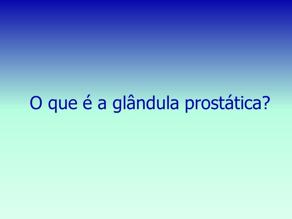 O que é a glândula prostática