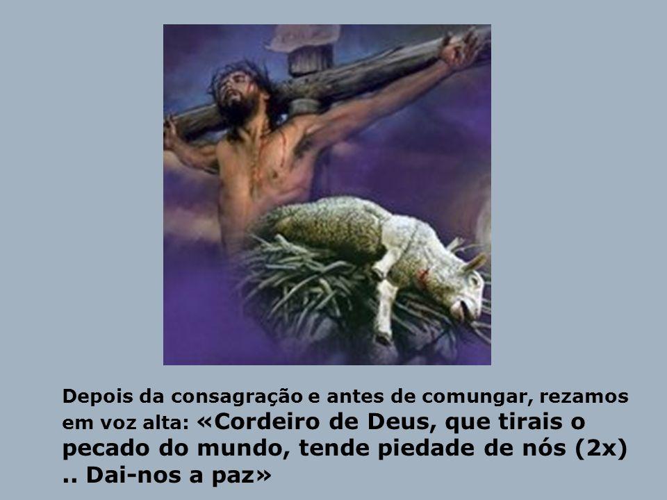 Depois da consagração e antes de comungar, rezamos em voz alta: «Cordeiro de Deus, que tirais o pecado do mundo, tende piedade de nós (2x) ..