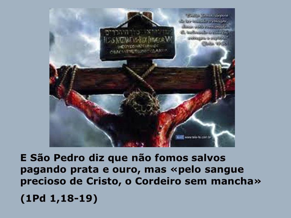 E São Pedro diz que não fomos salvos pagando prata e ouro, mas «pelo sangue precioso de Cristo, o Cordeiro sem mancha»