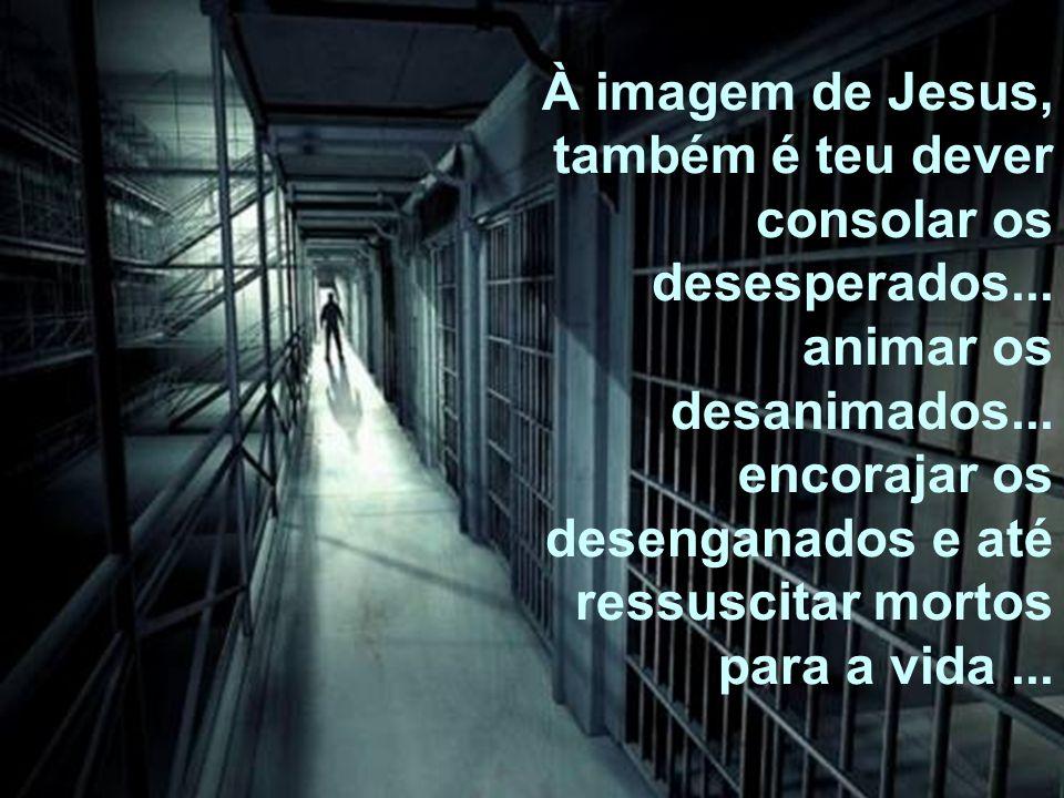 À imagem de Jesus, também é teu dever consolar os desesperados