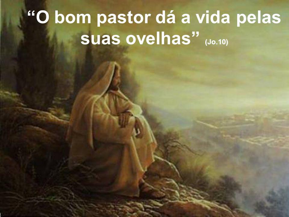 O bom pastor dá a vida pelas suas ovelhas (Jo.10)