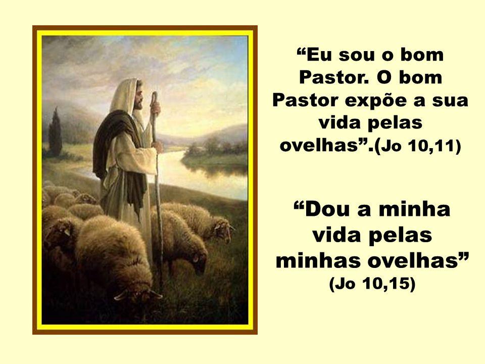 Dou a minha vida pelas minhas ovelhas (Jo 10,15)