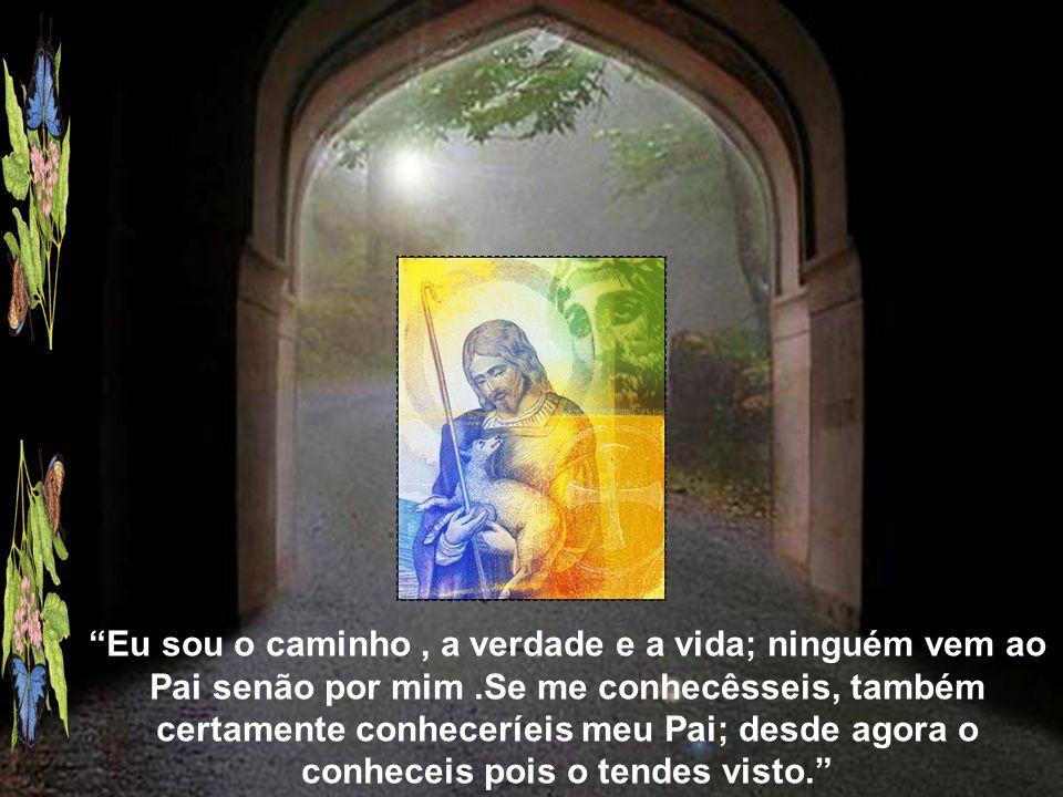 Eu sou o caminho , a verdade e a vida; ninguém vem ao Pai senão por mim .Se me conhecêsseis, também certamente conheceríeis meu Pai; desde agora o conheceis pois o tendes visto.
