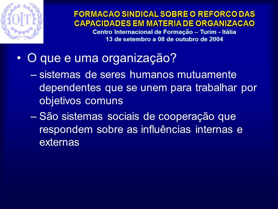 O que e uma organização sistemas de seres humanos mutuamente dependentes que se unem para trabalhar por objetivos comuns.