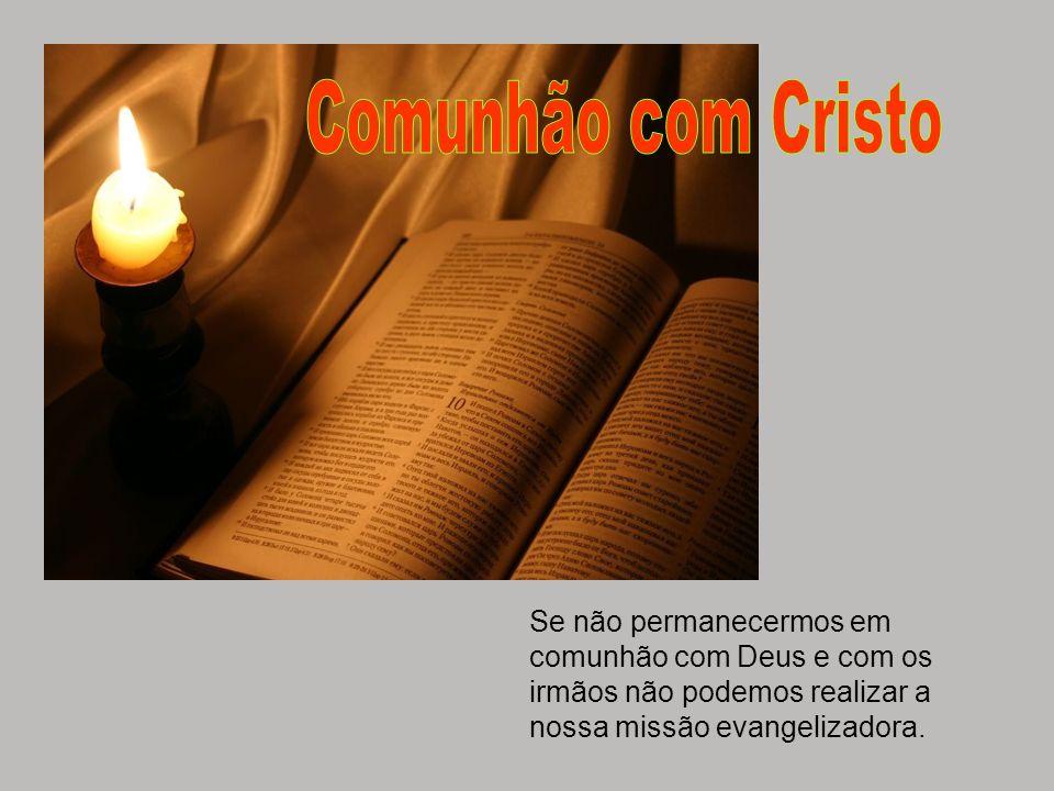 Comunhão com CristoSe não permanecermos em comunhão com Deus e com os irmãos não podemos realizar a nossa missão evangelizadora.