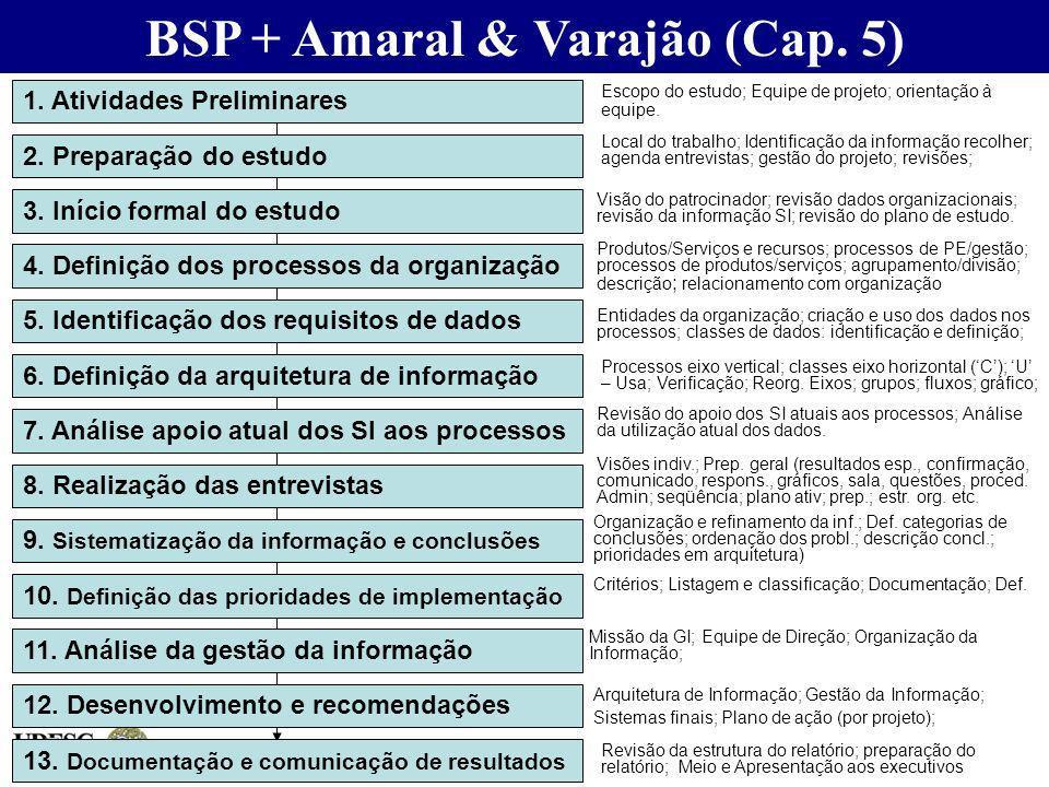 BSP + Amaral & Varajão (Cap. 5)