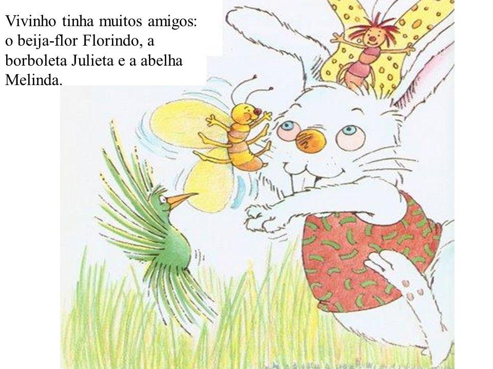 Vivinho tinha muitos amigos: o beija-flor Florindo, a borboleta Julieta e a abelha Melinda.