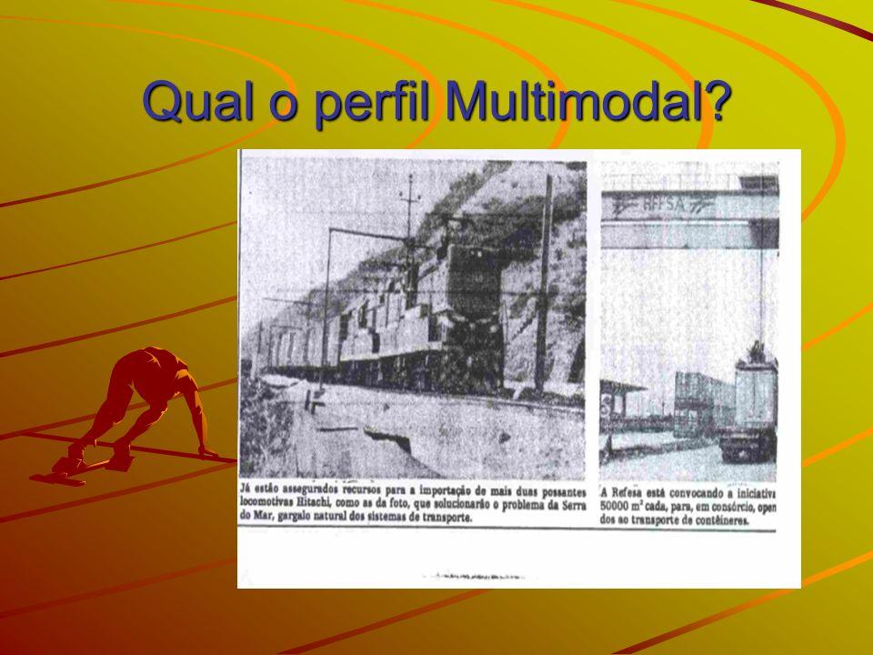 Qual o perfil Multimodal