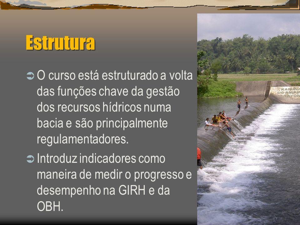 Estrutura O curso está estruturado a volta das funções chave da gestão dos recursos hídricos numa bacia e são principalmente regulamentadores.