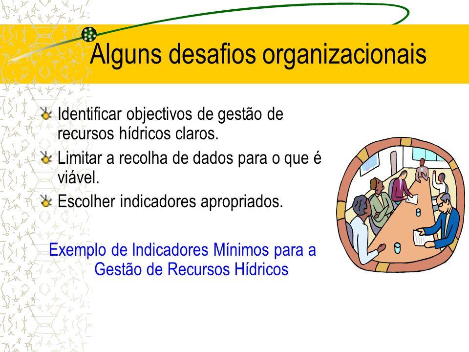 Alguns desafios organizacionais