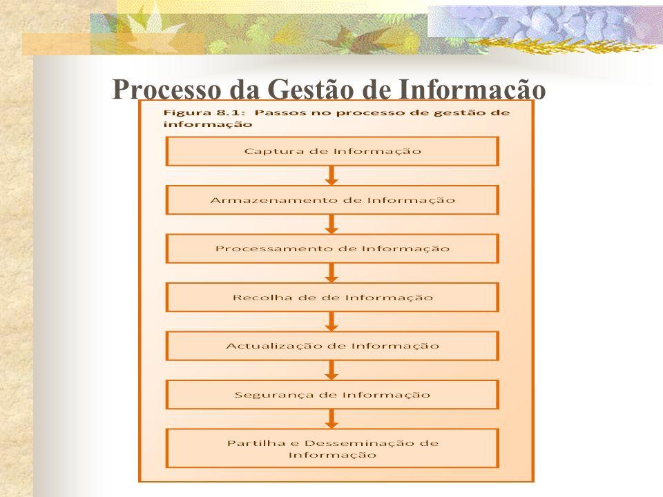 Processo da Gestão de Informação