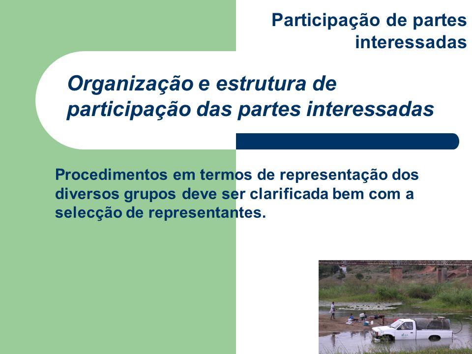 Organização e estrutura de participação das partes interessadas