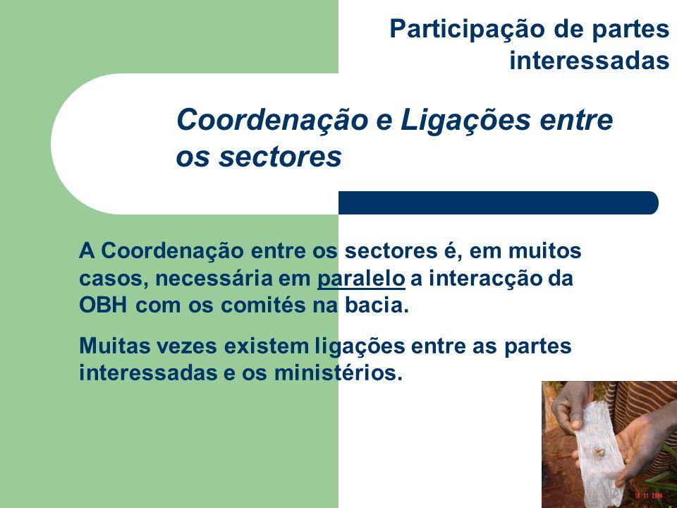 Coordenação e Ligações entre os sectores