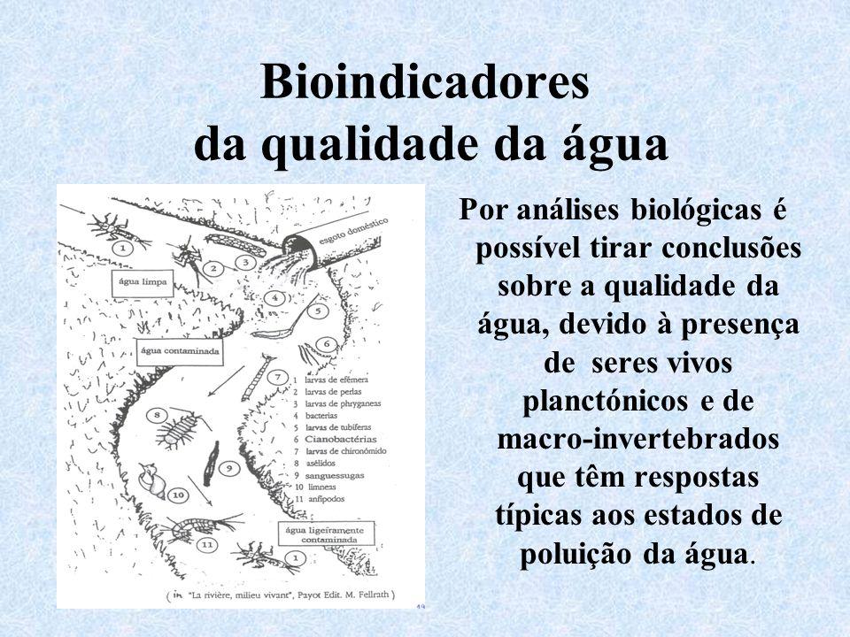 Bioindicadores da qualidade da água