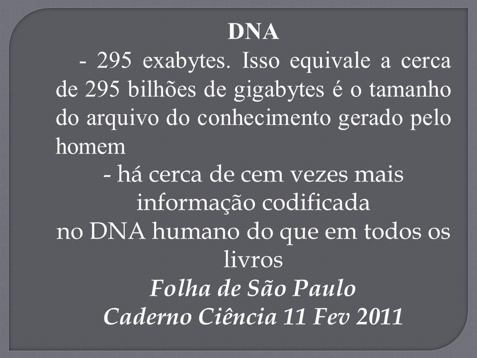 DNA - 295 exabytes. Isso equivale a cerca de 295 bilhões de gigabytes é o tamanho do arquivo do conhecimento gerado pelo homem.
