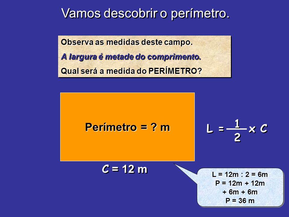 Vamos descobrir o perímetro.