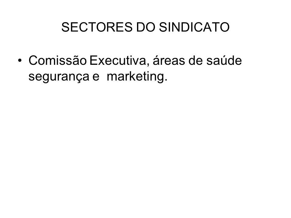 SECTORES DO SINDICATO Comissão Executiva, áreas de saúde segurança e marketing.
