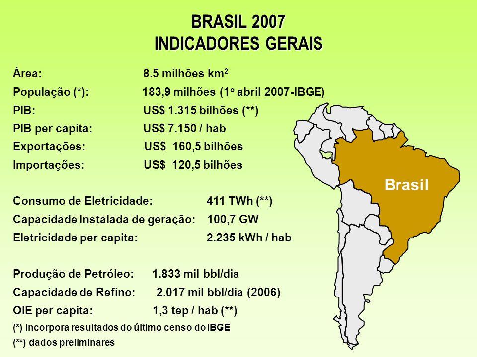 BRASIL 2007 INDICADORES GERAIS
