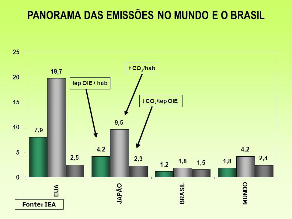 PANORAMA DAS EMISSÕES NO MUNDO E O BRASIL