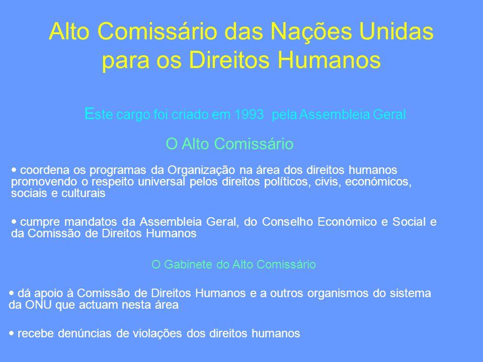 Alto Comissário das Nações Unidas para os Direitos Humanos