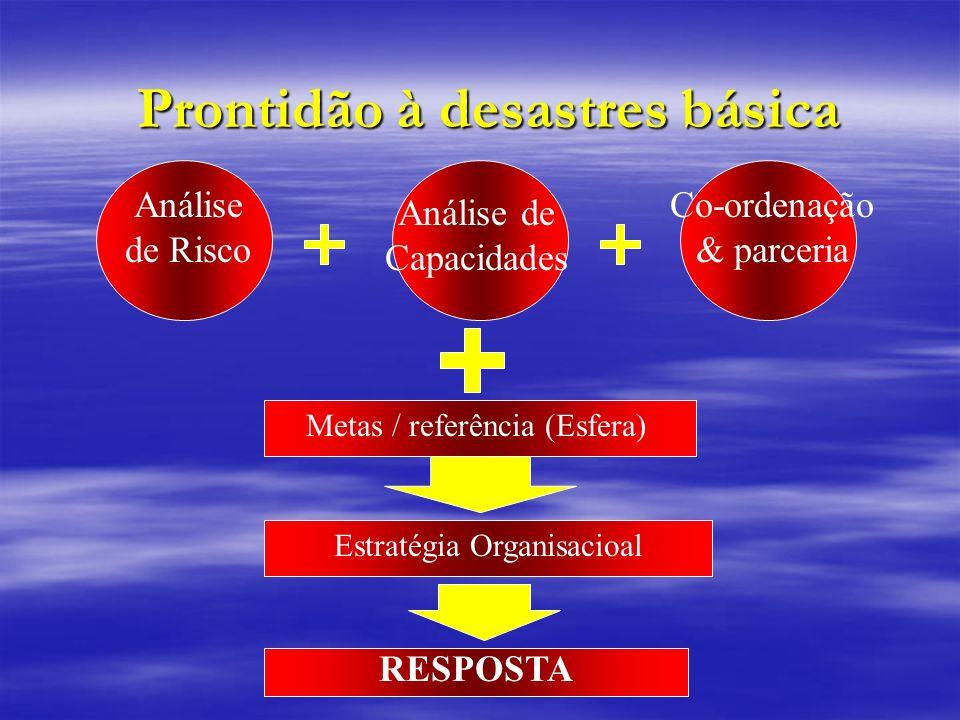Prontidão à desastres básica
