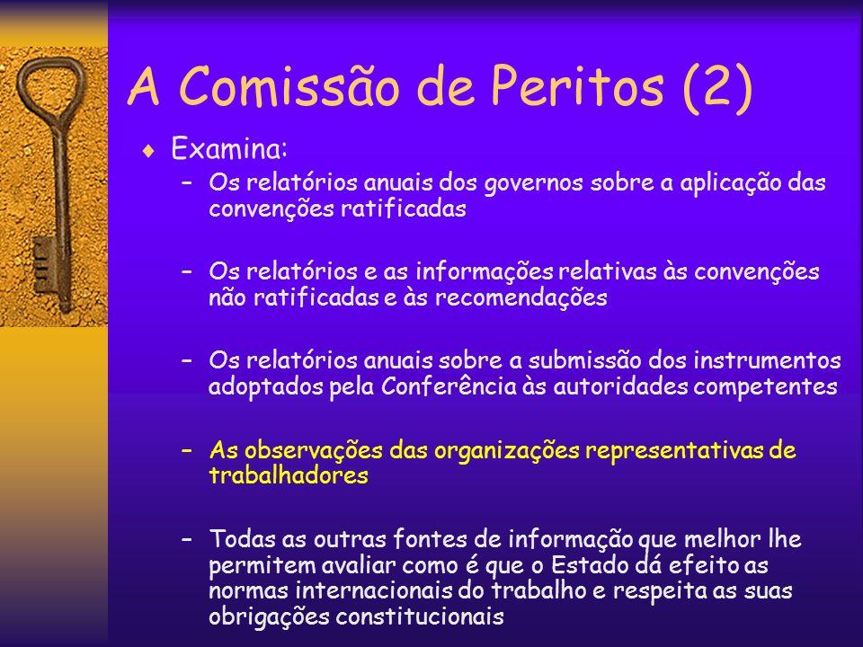 A Comissão de Peritos (2)