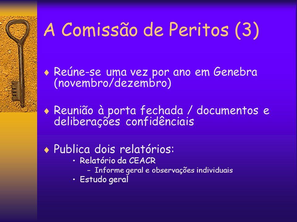 A Comissão de Peritos (3)