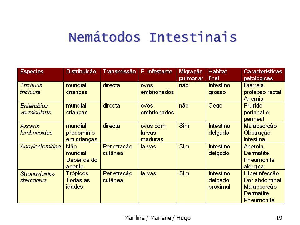 Nemátodos Intestinais